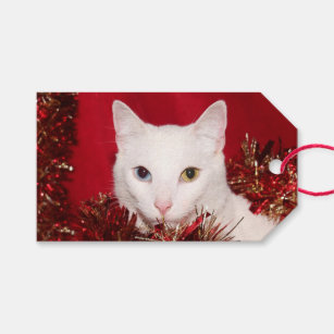 Odd Gift Tags & Gift Enclosures | Zazzle