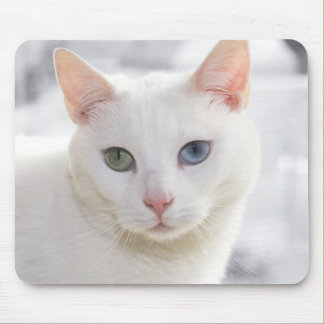 odd-eyed white cat close up face mousepad