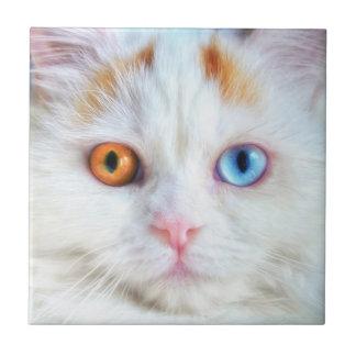 Odd-Eyed White Persian Cat Ceramic Tile