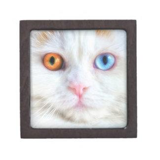 Odd-Eyed White Persian Cat Jewelry Box