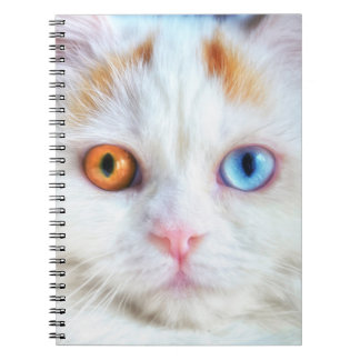 Odd-Eyed White Persian Cat Notebook