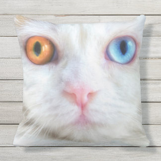 Odd-Eyed White Persian Cat Outdoor Pillow