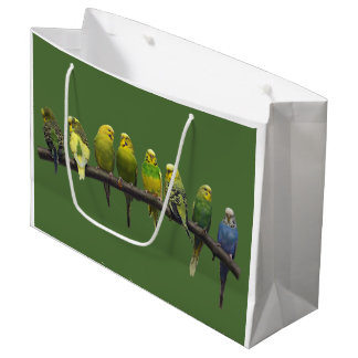 Odd One Out Gift Bag