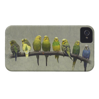 Odd One Out iPhone 4 Case-Mate Case