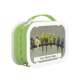 Odd One Out Personalised Lunchbox