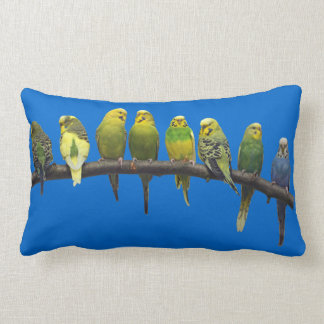 Odd One Out Pillow (Blue)