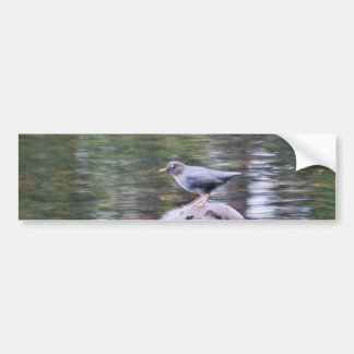 Odell lake, oregon bumper sticker