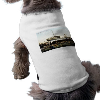 Odensburg, Nueva York, ferrocarril marino Playera Sin Mangas Para Perro