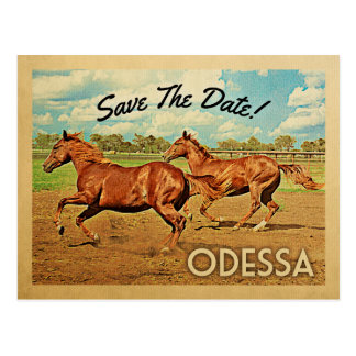 Odessa Texas Save The Date Horses Postcard