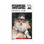Odie the Pom @ Thanksgiving Stamps