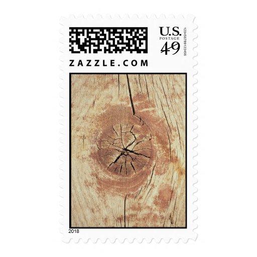 Oeste americano, nudo en madera resistida franqueo