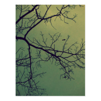 Of life and limbs postcard