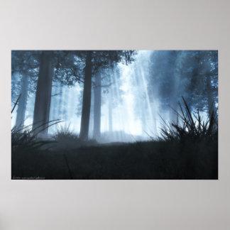 Of Light and Shadows print