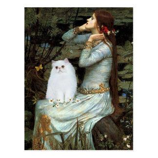 Ofelia - gatito persa blanco postal