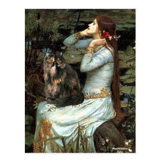 Ofelia - gato de calicó persa tarjetas postales