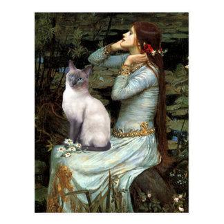 Ofelia - gato siamés del punto azul tarjeta postal