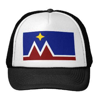 Oferta de la bandera de Montana Gorros