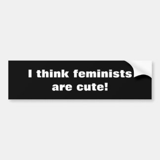 Offensive feminist bumper sticker