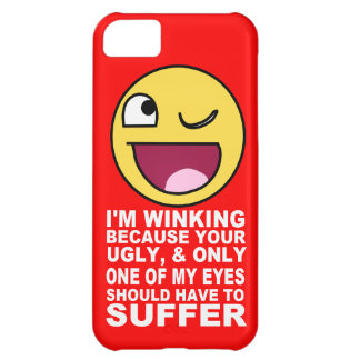 Offensive Insult Winking Because Your Ugly Case For iPhone 5C