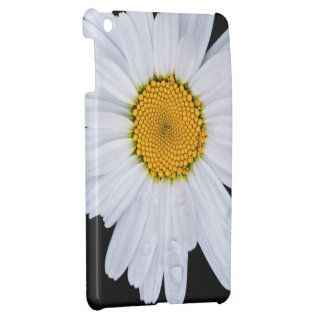 offer case for the iPad mini
