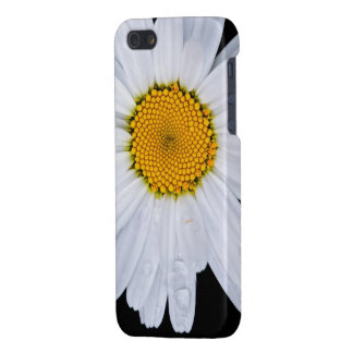 offer iPhone SE/5/5s cover