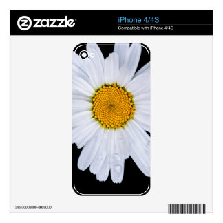 offer skin for the iPhone 4