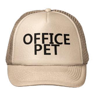 Office Pet Hat