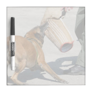 officer k9 training arm bite painting dog canine Dry-Erase board