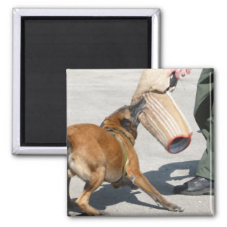 officer k9 training arm bite painting dog canine magnet