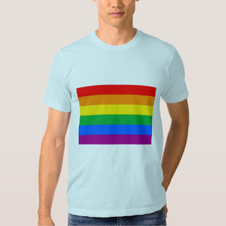 OFFICIAL GAY PRIDE FLAG T SHIRT