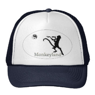 Official Hat  of the Church of Martial Arts!