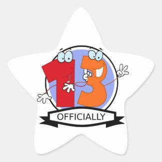 Officially 13 Birthday Banner Star Sticker