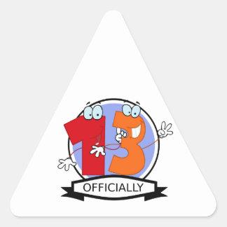 Officially 13 Birthday Banner Triangle Sticker
