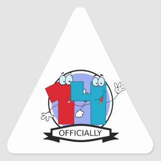 Officially 14 Birthday Banner Triangle Sticker