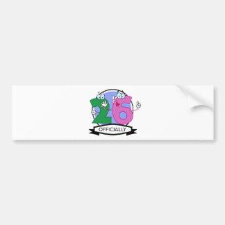 Officially 26 Birthday Banner Bumper Sticker