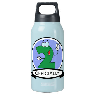 Officially 2 Birthday Banner Insulated Water Bottle