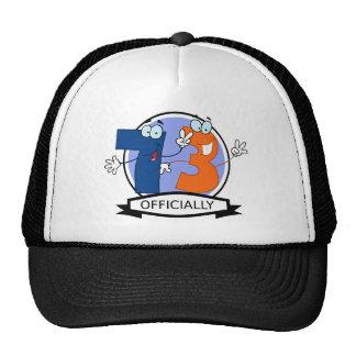 Officially 73 Birthday Banner Trucker Hat