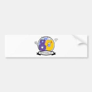 Officially 80 Birthday Banner Bumper Sticker