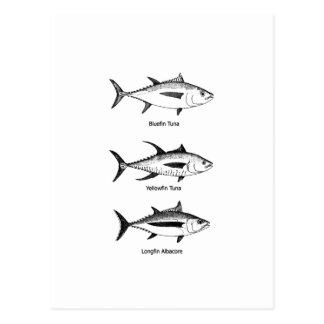 Offshore Fishing - Tuna Logo Postcard