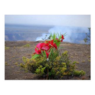 Ofreciendo a Pele diosa hawaiana del volcán Tarjetas Postales