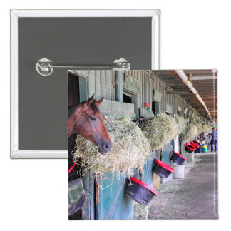 Ogden Phipps Stables with Scampering Button