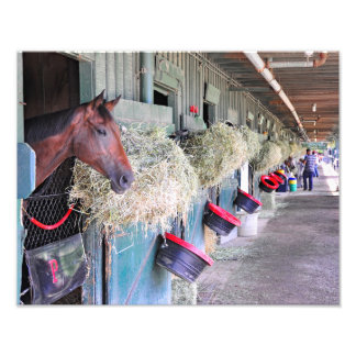 Ogden Phipps Stables with Scampering Photo Art