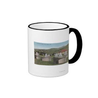Ogden, UtahView of Artesian ParkOgden, Utah Coffee Mug