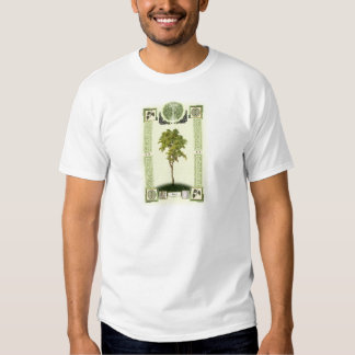 Ogham Birch Shirt