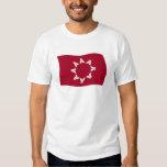 Oglala Lakota Flag Shirt