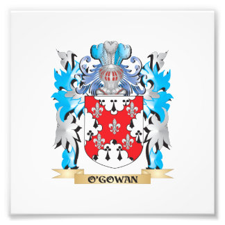 O'Gowan Coat of Arms - Family Crest Photographic Print