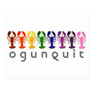 Ogunquit Maine Rainbow Lobsters Postcard