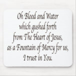 Oh Blood and Water - St. Faustina Mousepads