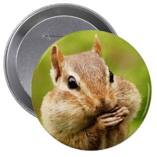 Oh botón redondo del Chipmunk tan fresco Pin Redondo De 4 Pulgadas