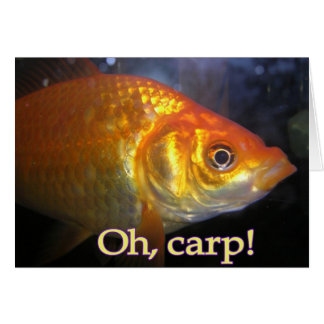 Oh, carp! Belated Birthday Card